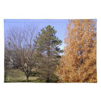 Fall-Bäume Tischset