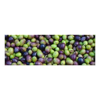 Fall-Ernte in Toskana, Oliven Fotodruck