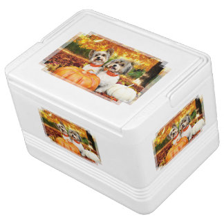 Fall-Erntedank - maximal u. Löwe - Yorkies Igloo Kühlbox