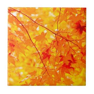 Fall-Farbhelle orange Keramik-Fliese Keramikfliese