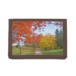 Fall-Herbst-Blätter