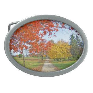 Fall-Herbst-Blätter Ovale Gürtelschnallen