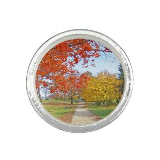 Fall-Herbst-Blätter Ring
