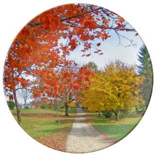Fall-Herbst-Blätter Teller