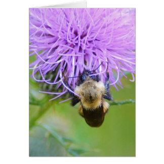 Fall herein dort! Biene hängt starkes Karte