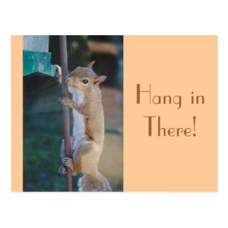 Fall herein dort, Eichhörnchen-Postkarte Postkarte