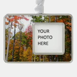 Fall in die Waldbunte Herbst-Fotografie Rahmen-Ornament Silber