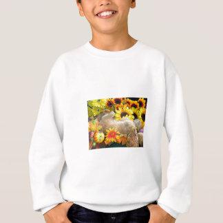 Fall-Kätzchen Sweatshirt