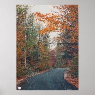 Fall-Land-Weg-Leinwand-Glanz-Druck Poster