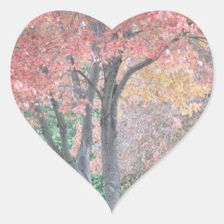 Fall-Schönheit Herz-Aufkleber