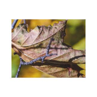 Fallblatt-Natur-Foto Leinwanddruck