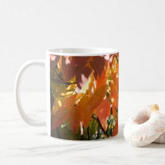 Fallfarbe der weißen Asche (Fraxinus Americana) Kaffeetasse