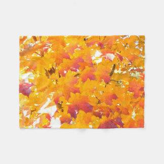 Fallfarbe des Ahorns (Acer) Fleecedecke