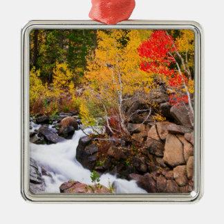 Fallfarbe entlang Bischofs-Nebenfluss, CA Quadratisches Silberfarbenes Ornament