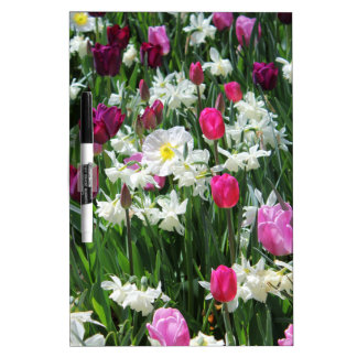 Falln romantischer Frühlings-Morgen Memoboard