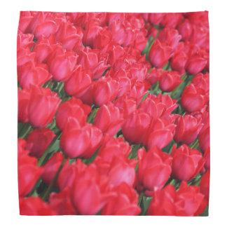 Falln Teppich der hochroten Tulpen Kopftuch