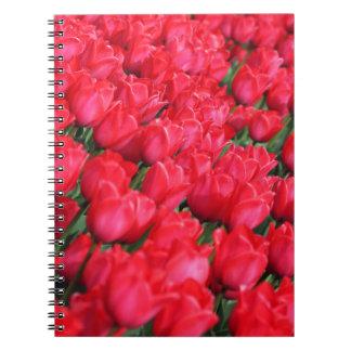 Falln Teppich der hochroten Tulpen Notizblock