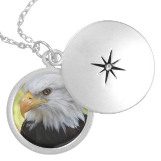 Falln Weißkopfseeadler-Freiheit Medaillon