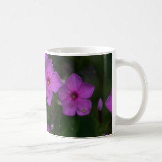 Fallphlox-Rosa-Wildblume-BlumenTassen-Schale Kaffeetasse