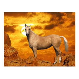 Fantasie-Pferde: Berg Postkarte