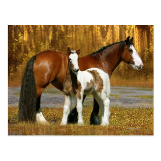 Fantasie-Pferde: Stute u. Fohlen Postkarte