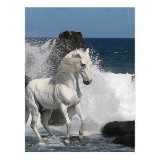 Fantasie-Pferde: Südliche Meere Postkarte