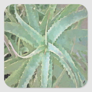 Fantastische Aloe Vera Quadratischer Aufkleber
