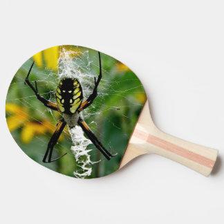 Fantastische Foto-Kugel-Spinne im Netz Tischtennis Schläger