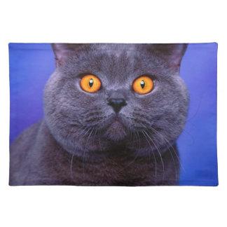 Fantastische graue schwarze Katze Stofftischset