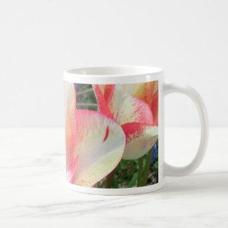 Fantastische Tulpen CricketDiane Kunst u Fotogr Kaffeehaferl