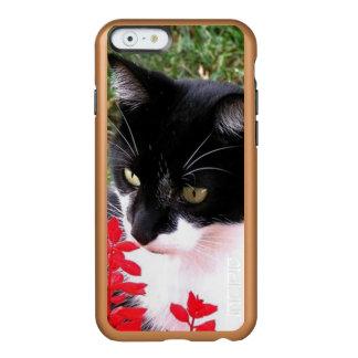 Fantastische Tuxedo-Katze im Garten Incipio Feather® Shine iPhone 6 Hülle