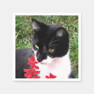 Fantastische Tuxedo-Katze im Garten persönlich Serviette