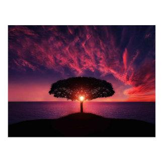 Fantastischer Sonnenuntergang Postkarten