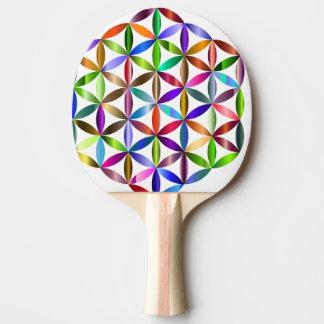 Farbe Tischtennis Schläger