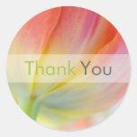 Farben der Frühlings-Tulpe • Danke Aufkleber