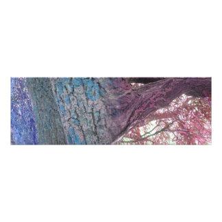 Farben Fotodruck