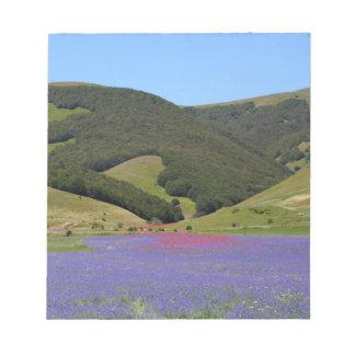 Farbfelds des Blaus mit Cornflowers Notizblock