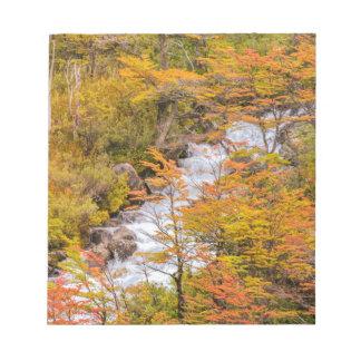 Farbige Waldlandschaftsszene, Patagonia Notizblock