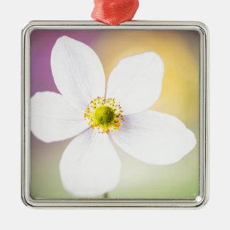 Farbrad Silbernes Ornament
