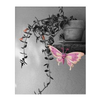 Farbspritzen-Schmetterlings-Stillleben-Fotografie Acryldruck