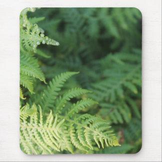 Farn-Blätter Mousepads