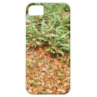 Farn-Holz-Wald verlässt Oregon landschaftliche iPhone 5 Hülle