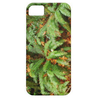 Farn-Holz-Wald verlässt Oregon landschaftliche iPhone 5 Schutzhülle