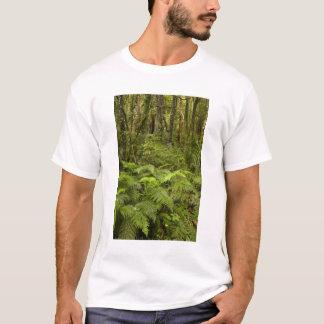 Farne und gebürtiger Busch nahe Matai fällt, T-Shirt