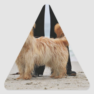 Farris - Lucy - Mischzucht Dreieckiger Aufkleber