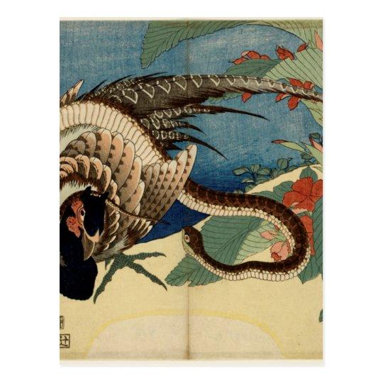 Fasan und die Schlange Postkarte