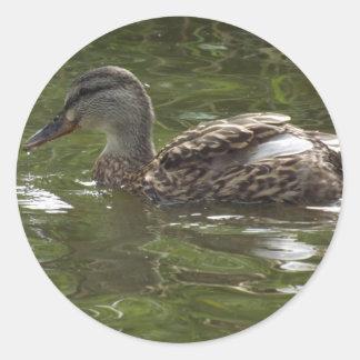 Fav wenig duckie runder aufkleber