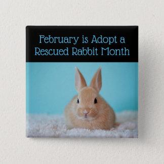 Februar ist adoptieren einen geretteten quadratischer button 5,1 cm