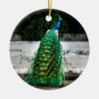 Feder-Kunstfarben des Pfaus schöne Keramik Ornament