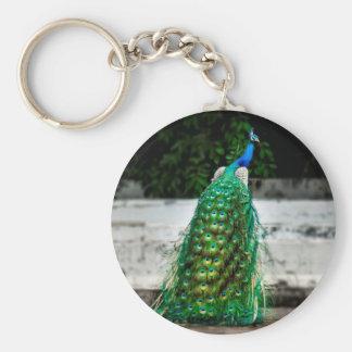 Feder-Kunstfarben des Pfaus schöne Schlüsselanhänger